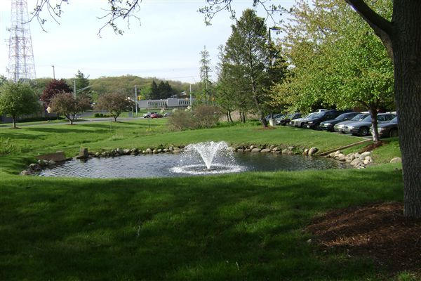 Bubbling pond and fountain