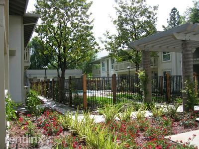 Apartment for Rent in Pleasanton