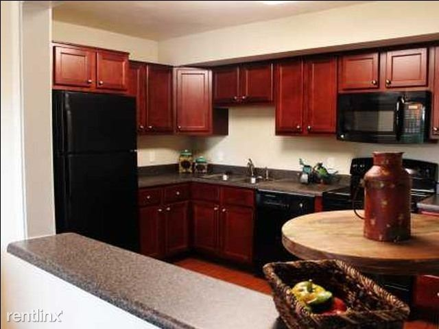 Gourmet Kitchens with all black energy efficient appliances