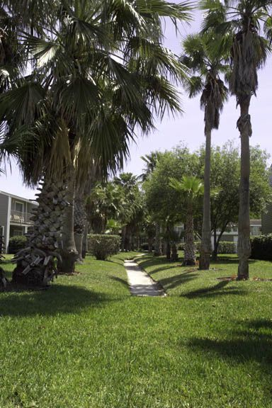 Sidewalk View