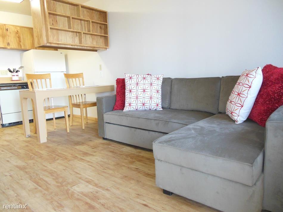 1x1 Living Area. Carpet or Plank Floor Options