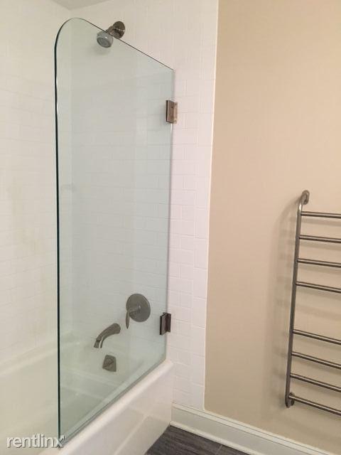 The Washington Frameless shower door