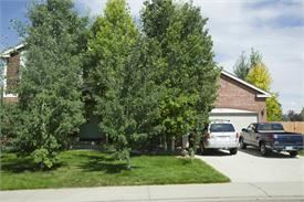 Beautiful master bedroom suite for rent in large Longmont home with private bath.