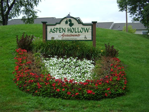 Welcome to Aspen Hollow!