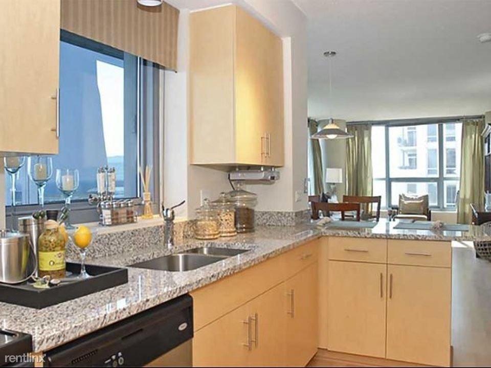 Near South Side 1 Bedroom Rental At 1255 S Michigan Ave Chicago Il 60605 1 Bed 1 5 Bath