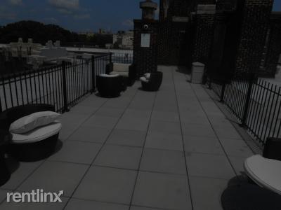 Roof Deck - Roof Deck