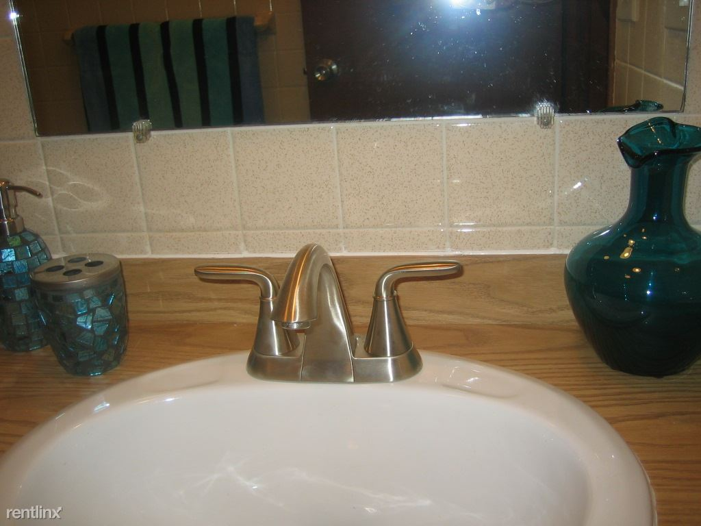 Newly Installed Faucet..............IMG_4436[1]