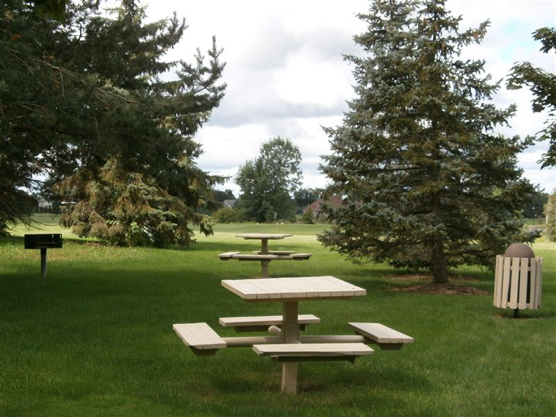 Picnic area with grill