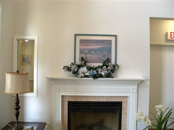 Resident Lounges With Fireplaces