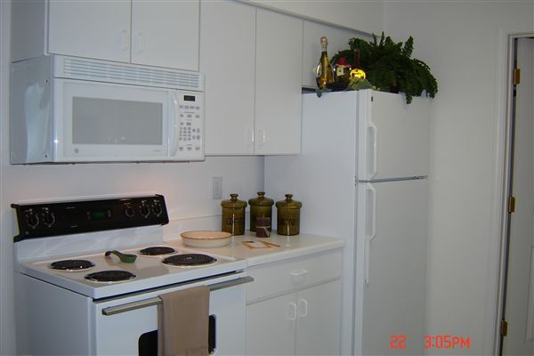 "Frost free refrigerator and 30"" electric stove"