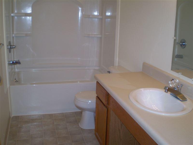 Large Updated Bathroom