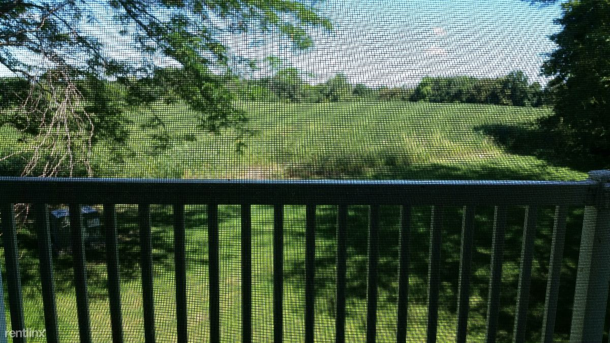 Wooded Views