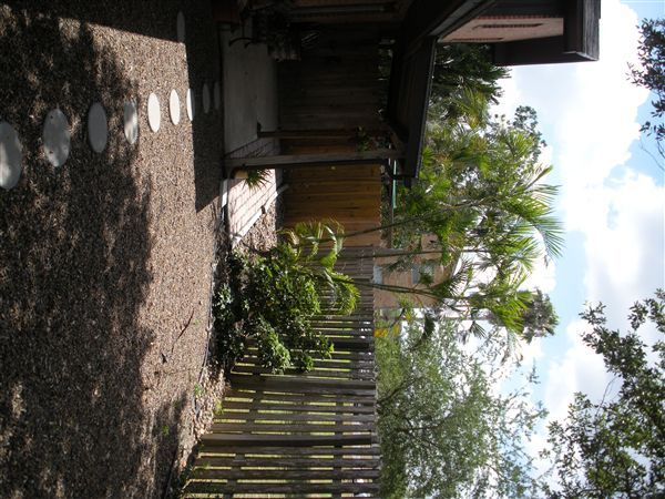 3 Bed 2 Bath Backyard