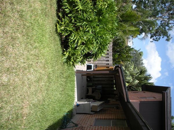 3 Bed 1 1/2 Bath Backyard