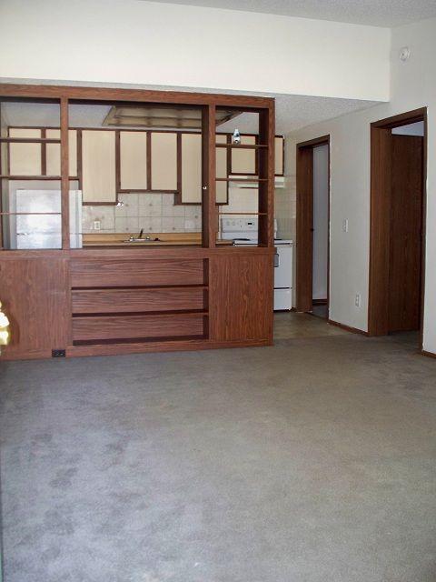 1 bedroom livingroom