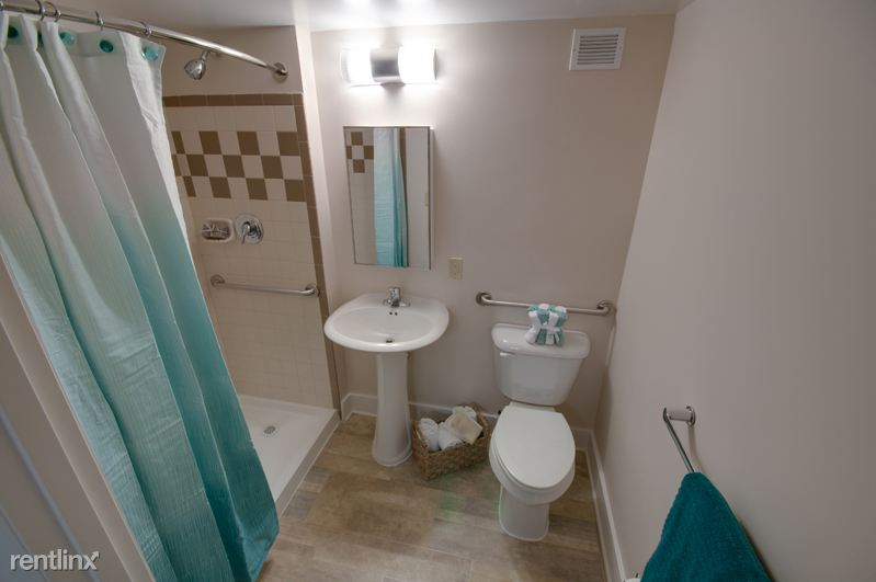 New Bathroom with Easy-Access Shower