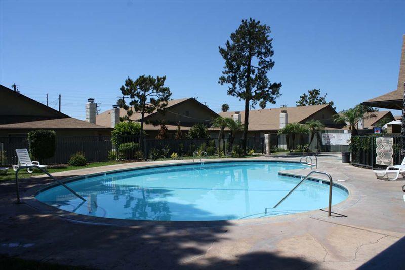 Pool- Pinewood Villas, Orange
