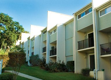 Best Image Of One Bedroom Apartments In Tallahassee Dorothy Benitez