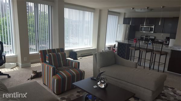 Living area & Kitchen view
