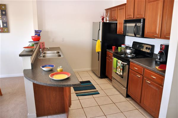 Illinois Houses For Rent In Illinois Homes For Rent Apartments Rental Properties Condos Il