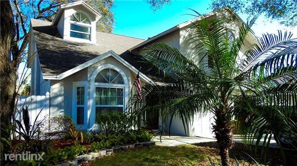 3031 Pine Forest Dr, Palm Harbor, FL