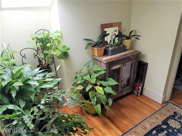 8 Farrington St Apt 3, Arlington, MA