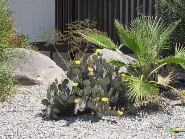 206 N Burton Way, Palm Springs, CA