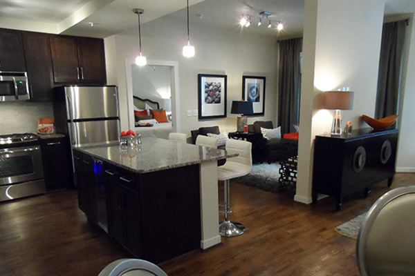 2900 West Dallas Luxury Apartments Houston Apartment For Rent
