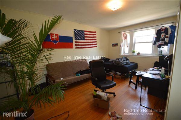 142 Davis Ave, Brookline, MA