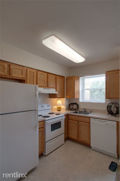 Refinished Kitchens with Energy Star Rated Appliances