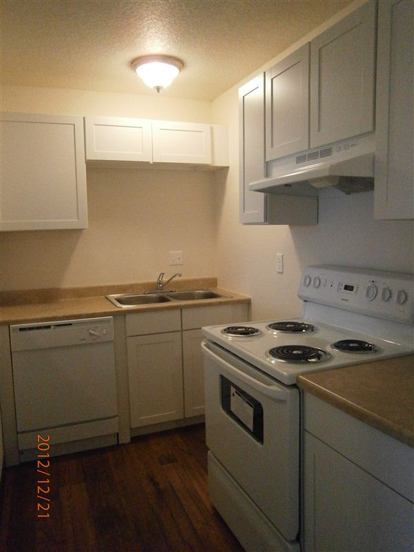 New appliances, lighting, cabinetry, countertops, and flooring in Kitchen