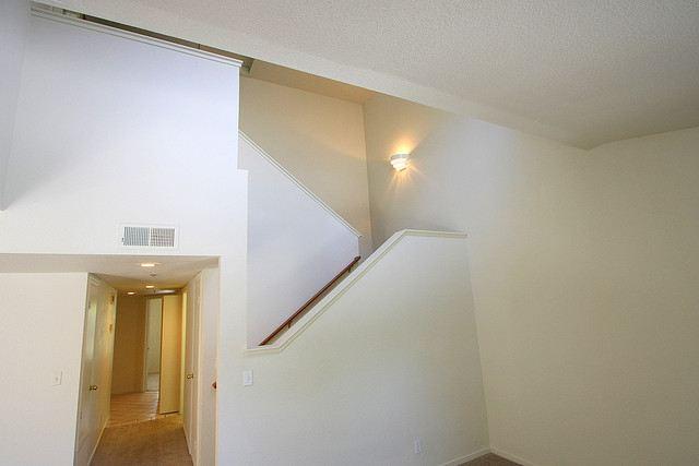 Entry/Livingroom View