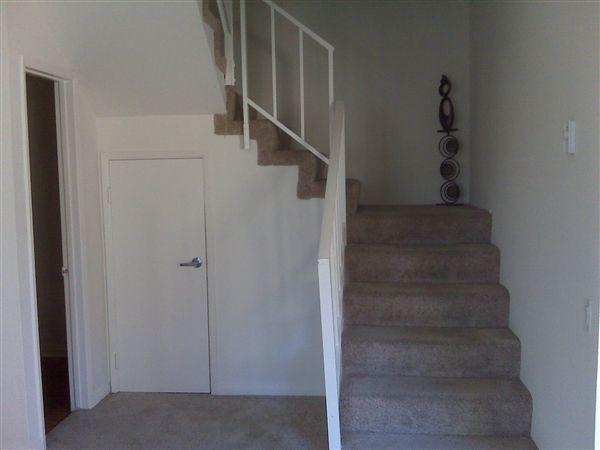 Spiral Staircase/Storage Closet!